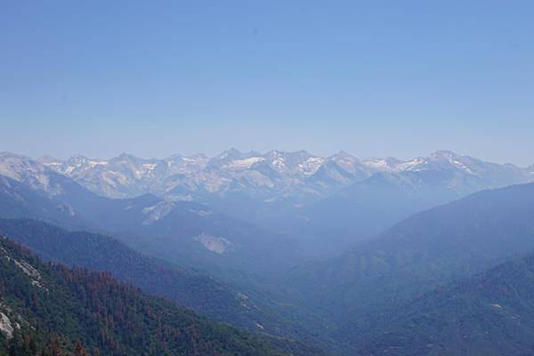 Bärenbeobachtung im Sequoia Nationalpark und Goldwaschen am Sutter Creek. Weitere Informationen unter www.wiraufreise.de
