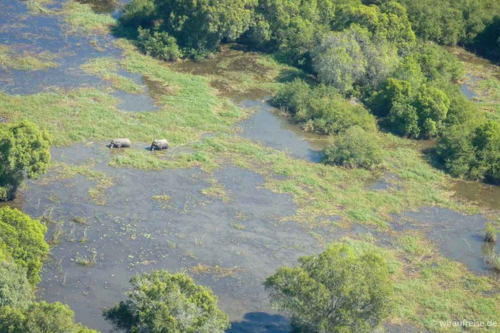 Fly-in-Safari im Okavango Delta in Botswana. Mehr Informationen unter www.wiraufreise.de