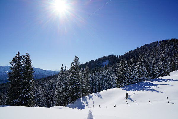 Schlitten fahren in der Alpenarena Hochhäderich im Bregenzerwald. Mehr Informationen unter www.wiraufreise.de