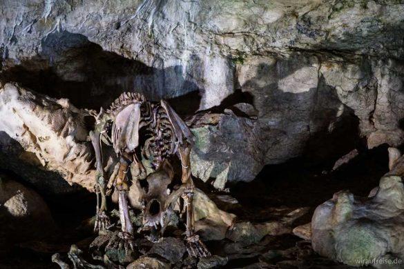 Schwäbische Alb – Ausflugsziele mit Kindern: Traumland Bärenhöhle
