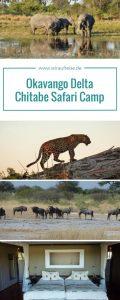 Beeindruckende Artenvielfalt im Chitabe Camp im Okavango Delta. Weitere Informationen unter www.wiraufreise.de