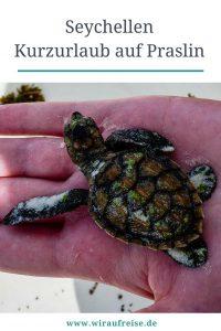 Seychellen Urlaub auf Praslin, dem Paradies auf Erden. Weitere Informationen unter www.wiraufreise.de