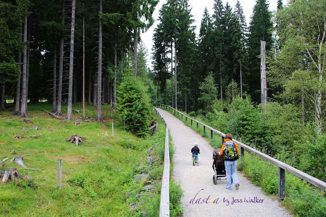 Haus zur Wildnis im Bayerischen Wald. Weitere Informationen unter wiraufreise.de