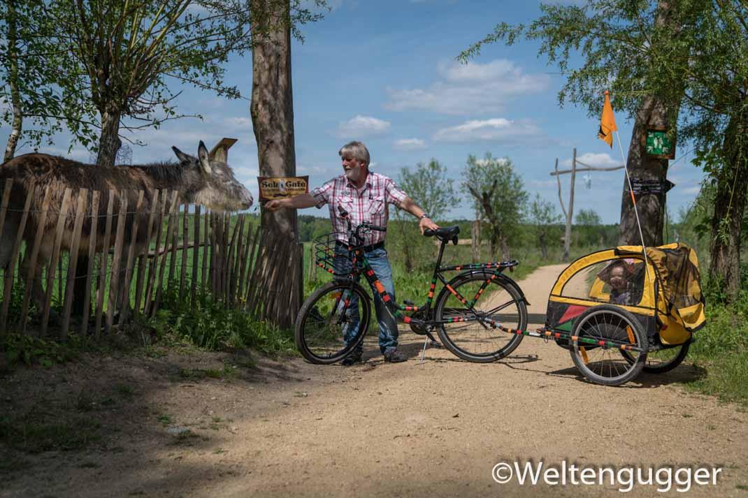 Ausflugstipps mit Kindern im Osten Deutschlands - Roundup Teil 4. Weitere Informationen unter www.wiraufreise.de