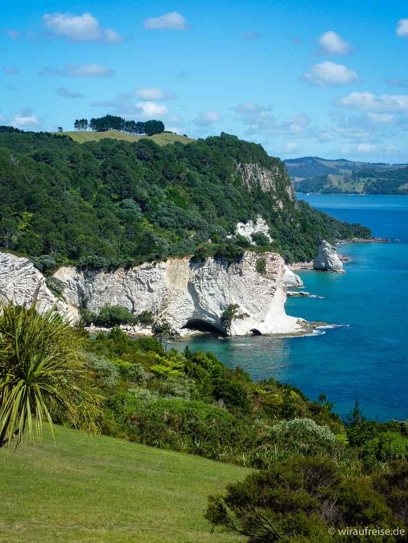 Cathedral Cove an der Mercury Bay auf der Coromandel Halbinsel Ausblick auf die Höhle Neuseeland nordinsel