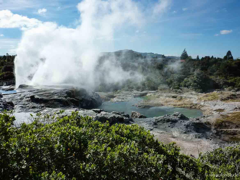 Ausbruch der Geysire im Buried Village in Rotorua, Neuseeland, Nordinsel