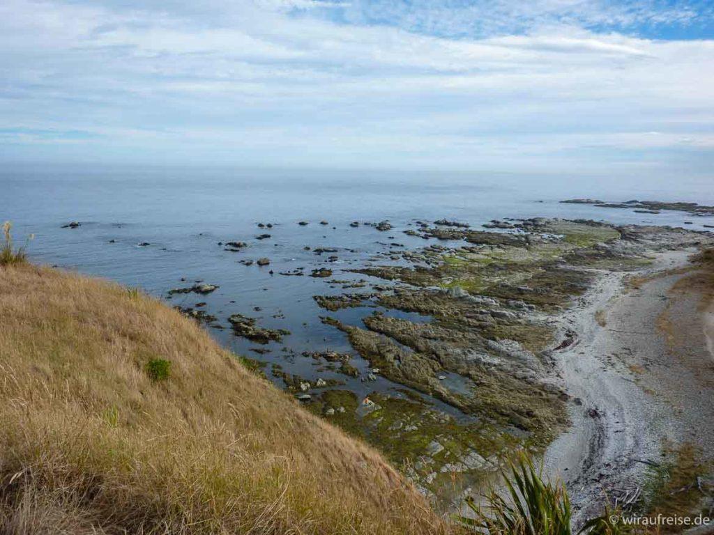 Küstenwanderung an Kaikouras Küste, Steilküste Südinsel Neuseeland