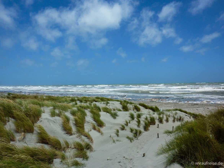 Zwischenstopp an der Tasmansee auf dem Weg nach Wellington, raue Wellen und vom Wind gepeitschte Gräser in den Dünen
