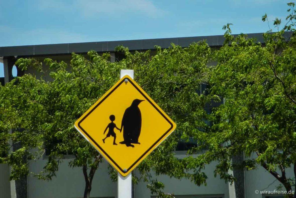 Pinguin führt Kind. Humorvolle Verkehrsschilder findet man viele in Neuseeland