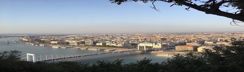 Blick auf Budapest mit der Donau im Vordergrund