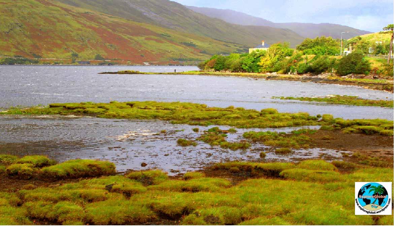 Der Killary Fjord im Connemara Nationalpark in Irland weitere informationen unter www.wiraufreise.de