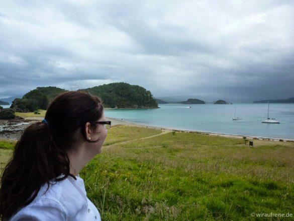 Ausblick auf das Meer mit vielen kleinen Inseln. Gras im Vordergrund. Bay of islands, neuseeland nordinsel