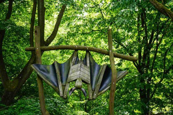 Fledermaus als Eingangstor beim Baumwipfelpfad