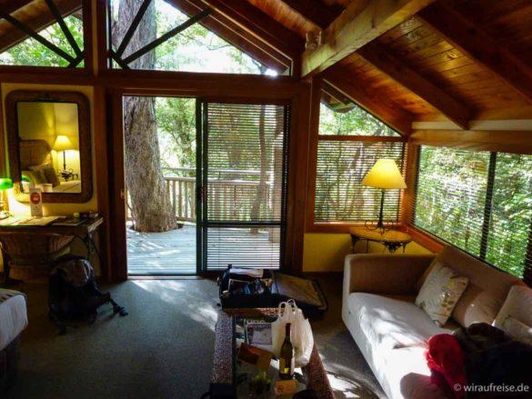 Ein Zimmer im Baum - das Bush-Chalet im Puka Park in pauanui neuseeland nordinsel