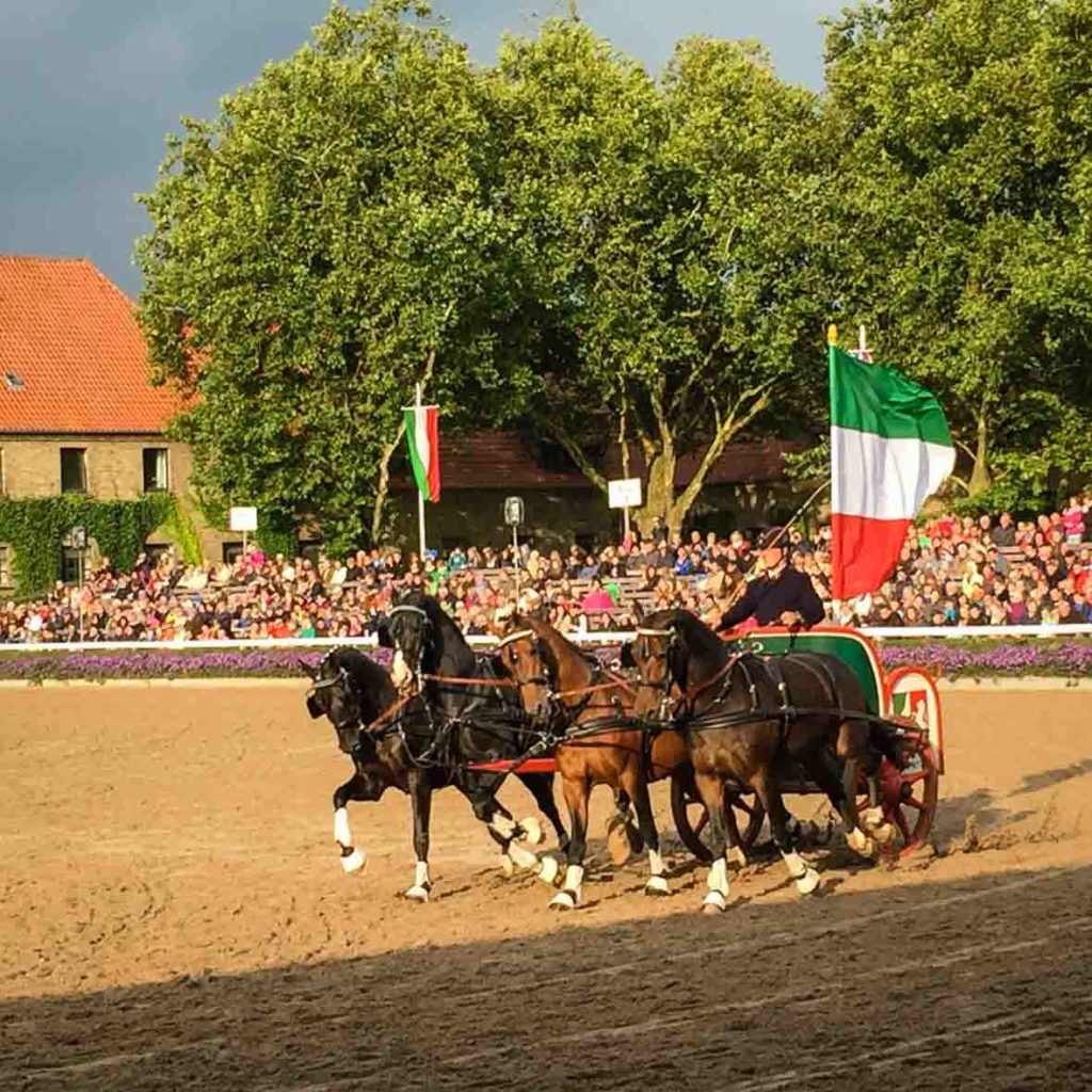 Quadriga bei der Hengstparade in Warendorf