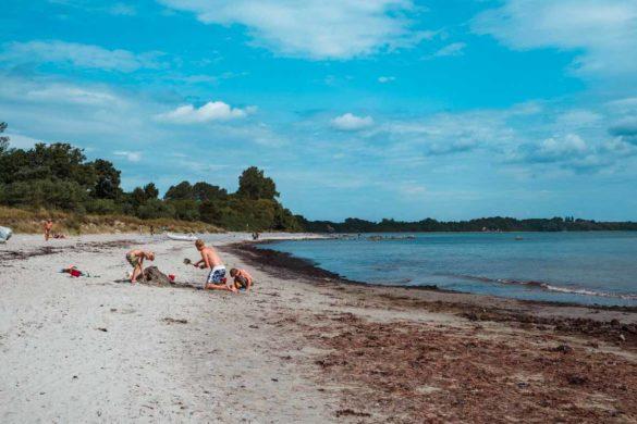 Wenn der Wind dreht, kommen die Algen. Aber beim Sandburgenbauen stören die nicht.